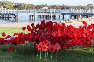 Mandurah ANZAC Centenary Poppies Project - Project Coordinator